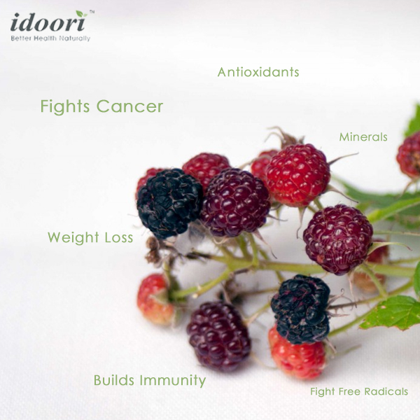 Top Benefits Of The Korean Black Raspberry